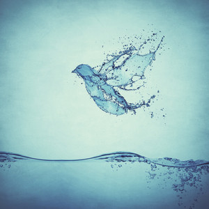 The Holy Spirit as a dove flies through the water