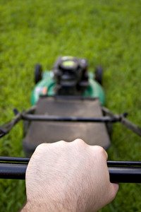 The interesting point of view from a man pushing a lawn mower.  Shallow depth of field.