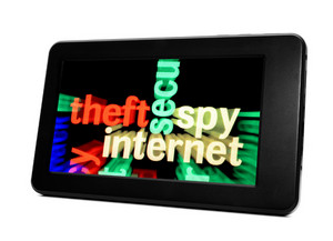 Theft Spy Web