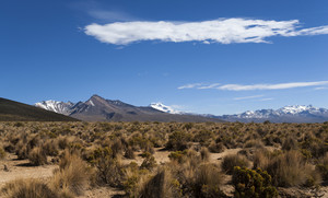 Thick scrub and distant mountains