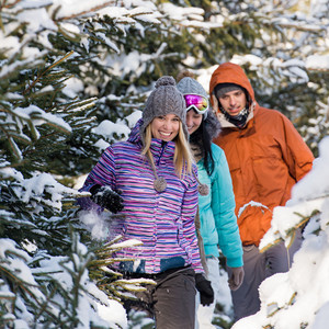 Three friends walking through snow winter forest