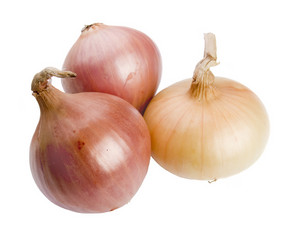 Three Onions Studio Isolated On White