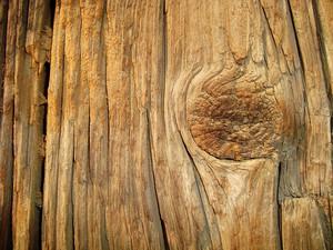Timber_texture