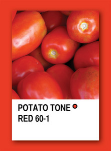 Tomato Tone Red. Color Sample Design