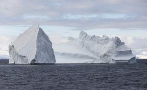 Towering icebergs at dawn