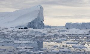 Towering icebergs in icy waters under a grey sky