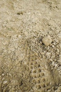 traces of the wheel off-road in mud
