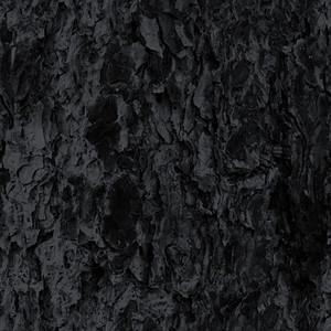 Tree Bark Seamless Web Tile