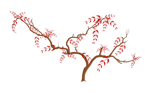 Tree Branches Nature Element