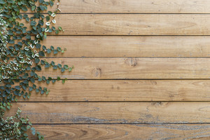 Tree on Wood planks texture background wallpaper