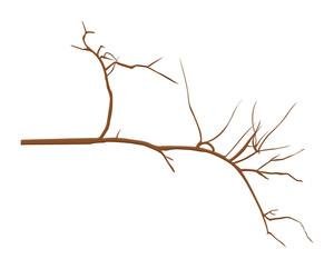 Tree Twig