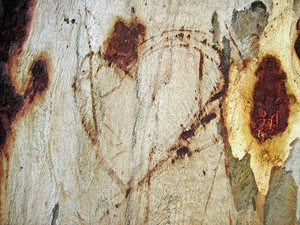 Tree_texture_skin