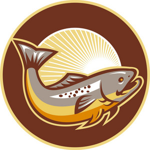 Trout Fish Jumping Sunburst Circle