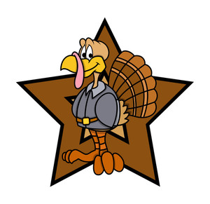 Turkey Bird Retro Star Graphic