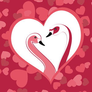 Two Graceful Swans Close Up In Love. Vector Illustration.