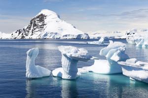 Unique, sunlit icebergs