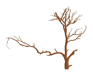 Urban Dead Tree