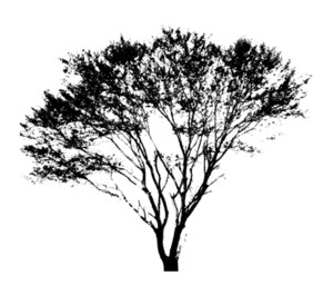 Urban Tree Shape Background