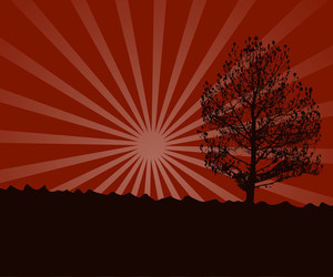 Urban Tree Sunburst Background
