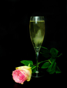Valentine Champaign & Rose Background