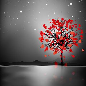 Valentines Day On Night Background