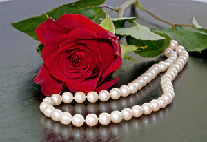 Valentines Day Roses And Pearls