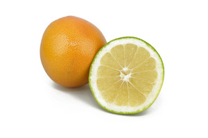 Variety Of Grapefruits On White Background
