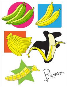 Various Bananas Vector Set