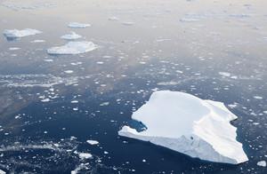 Vast field of sunlit ice floes