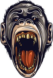 Vector Ape