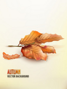 Vector Autumn Background With Lots Of Leaves