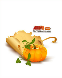Vector Autumn Background With Pumpkin