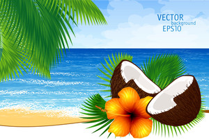 Vector Background Of Paradise Island With Tide, Palm Leaves, Coconut Cocktail And Tropical Flower