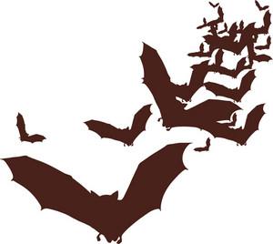 Vector Bats