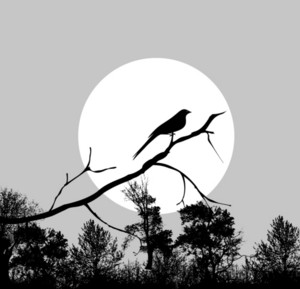 Vector Bird On A Branch