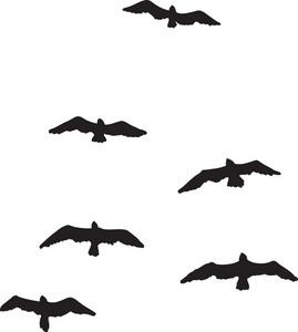 Vector Birds