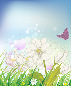 Vector Butterfly With Floral
