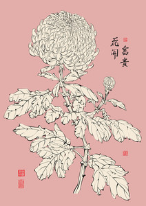 Vector Chinese Chrysanthemum. Translation: The Blossom Of Prosperity
