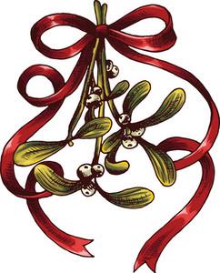 Vector Christmas Flower