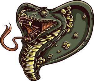Vector Cobra Snake
