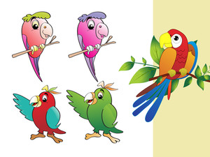 Vector Collection Of Parrot