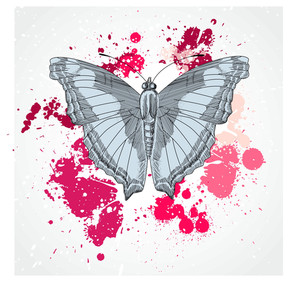 Vector Decorative Butterfly Background