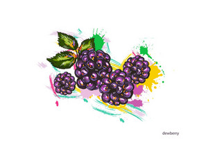 Vector Dewberry With Colorful Splashes