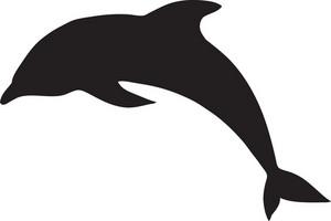 Vector Dolphin