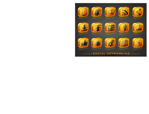 Vector Glossy Social Networking Icons