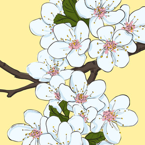 Vector Greeting Card With Blossom Cherry Flowers.