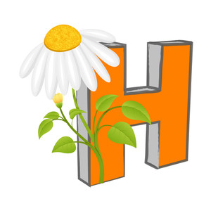 Vector H Alphabet With Flower