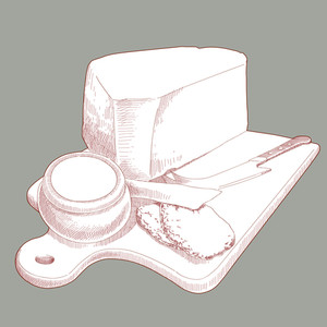 Vector Hand Drawn Cheese