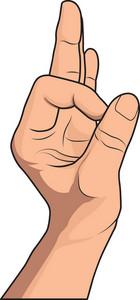 Vector Hand Gesture