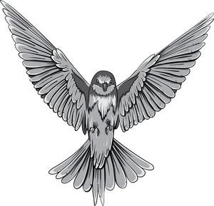 Vector Hawk